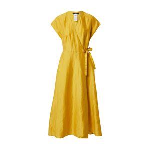 Weekend Max Mara Letní šaty 'TERRENO'  žlutá