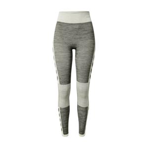 Hummel Sportovní kalhoty  šedá / tmavě šedá