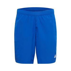 ADIDAS PERFORMANCE Sportovní kalhoty  bílá / královská modrá