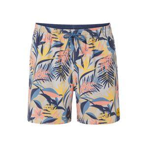 O'NEILL Sportovní plavky 'HAWAII'  mix barev / béžová